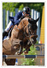 Longines Eiffel Jumping (JLucclic) Tags: cheval effeil cso longines horse