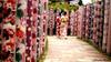 Walking Geishas (ermy70) Tags: astounding astoundingimage geishas geisha kyoto japan summer asia