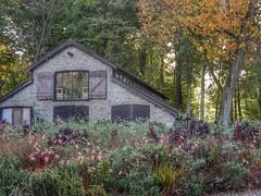 Timber yard (sander_sloots) Tags: timber yard open air museum openluchtmuseum arnhem houtloods trees bomen autumn herfst herfstkleuren colours