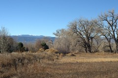As Close as I Got (KsCattails) Tags: colorado foothills ftcollins kscattails landscape mountain rockies winter