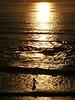 Gold Surfer (RZ68) Tags: surfer surfing surf gold silhouette sun sunset california salmoncreek sonomacounty beach waves light coast ocean man