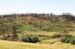 Fire14.tif (NRCS Montana) Tags: fire forestfire babydeanfire