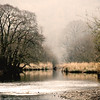 River Rothay on the edge of Rydal Water, Lake District (Pexpix) Tags: grasses square river day2 water lph ripples trees nationalpark lakedistrict southlakelanddistrict england unitedkingdom gb rain