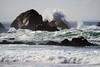 IMG_0622 (fzx_is_phun) Tags: canon7d canon canonphotography pointreyesnationalseashore pointreyes marincoast marincounty ocean beach california northerncalifornia