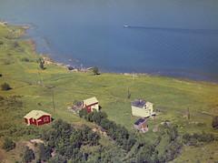 PEM-FWI-37337 Susannejord på Kvaløya
