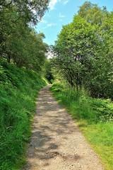 29857 (benbobjr) Tags: worcestershire worcester midlands westmidlands westmercia herefordandworcester greatmalvern malvern malvernhills herefordshire herefordshireworcestershireborder hillsofworcestershire marilynsofengland path pathway footpath bridleway publicfootpath precambrian gneous metamorphic severnvalley moelbryn barehill moelfryn baldhill malferna malverne muchmalvern jabezallies antiquarian vern sarn varn malvernwater biologicalandgeologicalsiteofspecialscientificinterest nationalcharacterarea103 naturalengland areaofoutstandingnaturalbeauty countrysideagency sssi grassland woodland geologicalsite themalvernhillssssi forestofdeanlocalplanreview keywildlifesite kws malvernhillsconservators shireditch bronzeageboundaryearthwork wychecutting mountainpass prehistorictimes saltroute metalmoneybars latènepeople ancientfolklore britishchieftain romans britishcamp ironageearthworks jrrtolkien cslewis georgesayer headofenglish malverncollege thehobbit thelordoftherings gramophonerecord jrrtolkienreadsandsingshisthehobbitthefellowshipofthering whitemountainsofgondor sugarloafhill northhill happyvalley
