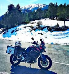 White Friday....❄️ (carlesbaeza) Tags: advrider adventure adventurerider bigtrail biker dualsport dualsportlife travel motobiker moto motorcycle motorrad yamaha xt1200z supertenere xladv catalunya catalonia
