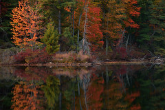 Autumn Lights (SunnyDazzled) Tags: forest autumn fall foliage colors refecltion water lake kanawauke harriman statepark newyork nature landscape evening sunset longexposure
