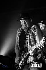 2017_11_24 Bosuil Zuma – Neil Young tribute ZPG_4518-Johan Horst-WEB