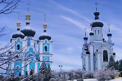 20. Блгв. кн. Александра Невского в Богородичном 06.12.2017