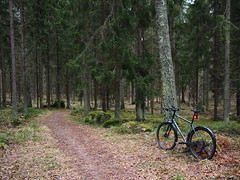 2017 Bike 180: Day 277, December 10 (olmofin) Tags: 2017bike180 finland bicycle helinki polkupyörä mtb 29er path central park keskuspuisto lumix 20mm f17