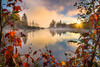 Fall Morning on the Pond (BenjaminMWilliamson) Tags: atmosphere autumn colorful colors cool fall fallfoliage fog framing gifts image landscape light marshfield mist natural nature newengland photography prints scenery scenic sony sony1635mmf4 sonya7rii steam sunstar turtleheadpond usa vt vermont view