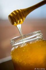 D014-©N.GOMEZ_Maison-du-Terroir-BD-copyright (roquebrunesurargens_lesissambres) Tags: agriculteur apiculture miel miseensituation nicogomez officedetourismeroquebrunesurargens publicité roquebrunesurargens