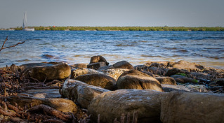 Stones on the beach at Manatee River
