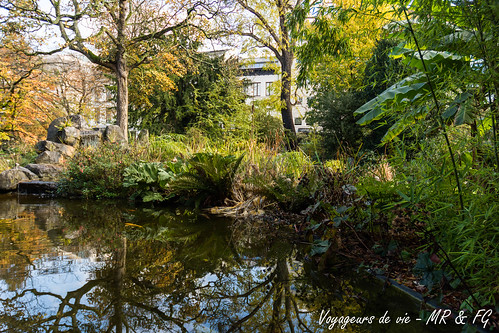 """Reflets d'automne • <a style=""""font-size:0.8em;"""" href=""""http://www.flickr.com/photos/151667760@N04/26845056019/"""" target=""""_blank"""">View on Flickr</a>"""
