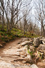 Craggy Pinnacle Trail (J. Parker Natural Florida Photographer) Tags: craggygardens craggypinnacle trees forest fall autumn ethereal eerie trail hike hiking blueridgeparkway asheville northflorida woods outdoor nature naturalbeauty haunted creepy vscofilm vsco scenic mountains appalachia appalachians