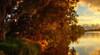 Edge Of Reality. (williams.darrell53) Tags: landscape sunset river water reflection sun light australia cloud canon samyang darrell williams