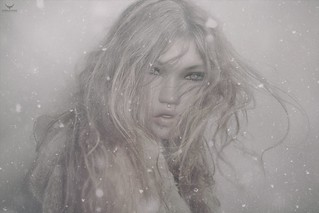 Perse~Winter
