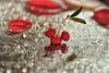 Sunday Morning (Zara Calista) Tags: nikon berries leaf leaves water droplets dew morning light