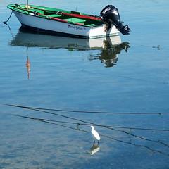 Reflejos (nuska2008) Tags: nuska2008 nanebotas isladearosa pontevedra ríasbajas galicia ave barca motor olympussz30mr españa reflejos ría illadearousa vacaciones garza azul water boat