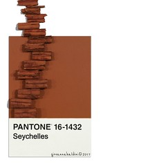 seychelles (brescia, italy) (bloodybee) Tags: pantone cards colors match colormatch cinnamon spices spicy food seychelles brown stilllife square