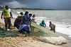 Pesca en Sri lanka (Inmacor) Tags: pesca pescar redes people inmacor beach storm sky travel viajando 2017 noviembre scene oficios tormenta peces