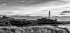 Turnberry Lighthouse from the Golf Course (Catherine Cochrane) Tags: blackandwhitephotography monochrome mono northernlighthouseboard turnberrylighthouse firthofclyde paddy'smilestone scottishcoastline coastal ailsacraig lighthouse turnberry golf golfcourse outdoors light ayrshire landscape seascape uk bw