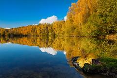 Herbst am Moyländersee (fotoperle:))) Tags: deutschland germany moyland herbst autumn spiegelung reflections bäume trees wasser water wolken clouds see sea niederrhein