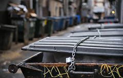 Irony - Trash or Treasure? (bobglennan) Tags: nikon nikond750 nikkor philadelphia irony onemanstrashis streetlife streetart sillyrubbish chainedtolife graffiti reality realstilllife