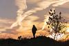 Donde tu vas yo yambien (GLAS-8) Tags: paseo campo atardecer perro hombre arbol contraluz nubes noviembre mcarmenverde glas8