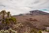 Formica Leo & Le Volcan (Piton de la Fournaise, La Réunion) (Filotte) Tags: vulkan piton de la fournaise réunion 974 formica leo enclos pas bellecombe krater volcano