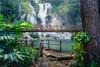 Kuang Si Waterfalls in Laos (YuriFineart) Tags: landscape forest water jungle rainforest bridge beautiful waterfall wooden laos framing fineart vegetation yuri kuangsi luangprabang naturalframing kuangsiwaterfall yurifineart