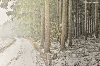 Snowfall with crosswinds