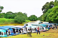 Tortuguero Boat Terminal, to Tortuguero National Park, Costa Rica. (petershaw4) Tags: thepassagetothetortugueronationalpark costarica