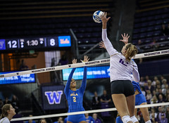 UW UCLA-FT4I0170 (Pacific Northwest Volleyball Photography) Tags: volleyball ncaa pac12 pac12vb uwhuskies washington ucla