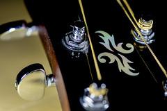Guitar Tuning Pegs (roseysnapper) Tags: ledlighting macromondays memberschoicemusicalinstruments nikkor105mmf28 nikond810 acousticguitar closeup depthoffield stringedinstrument tuningpegs lightroom macro photoshop yamaha color colour design detail guitar string