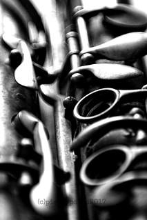 Macro Mondays - Members Choice - Musical Instruments