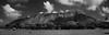 Diamond Head, Honolulu (OzzRod) Tags: pentax k1 hdpentaxdfa28105mmf3556 diamondhead honolulu hawaii landmark icon volcano kapiolani park monochrome blackandwhite dailyinnovember2017 stitch panorama