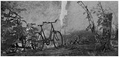 Vélo déco (Pi-F) Tags: campagne vélo bicyclette nb nbbwsw noiretblanc effet mur façade ancien périgord végétation oblong antiquité stationnement vétuste rouille oublié abandonné décoration