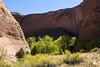 Main Part of Coyote Gulch (isaac.borrego) Tags: canyon desert glencanyon nationalrecreationarea escalante utah canonrebelt4i