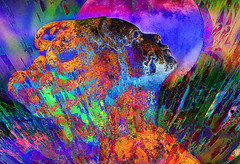 mermaid in the moonlight (LotusMoon Photography) Tags: mermaid vividcolor vivid digitalpainting hss digital artistic artwork creative creation layers colors intense bright female happysliderssunday annasheradon lotusmoonphotography postprocessed painterly