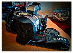 The  rangefinder Sony NEX-5T. (Aglez the city guy ☺) Tags: sony rangefinder indoor information experiment exploration photography