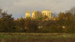York Minster from Hob Moor, November 2017 (nican45) Tags: 12november2017 12112017 2017 canon hobmoor minster november powershot sx700hs yil york yorkincidentlight yorkshire clouds photography sky tree