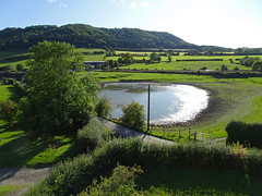 Pond behind Stokesay Castle (Dunnock_D) Tags: uk unitedkingdom britain england shropshire stokesay tree blue sky white clouds green grass trees pond fields