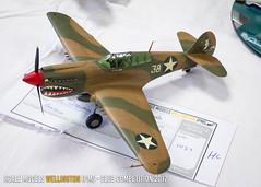 A1 - P-40E Warhawk - David Burling