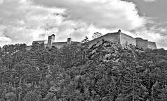 Citadelle Sisteron (laurent KB) Tags: alpesdehauteprovence sisteron citadelle