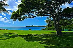 Relaxing Hawaiian Bay (trailwalker52) Tags: oahu beach tree bay water hawaii relaxing idyllic sleep sleeping beautiful green vibrant vacation destination shore pretty