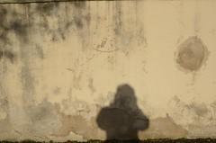Müür (anuwintschalek) Tags: nikond7000 d7k 18140vr austria niederösterreich sügis autumn herbst november 2017 buckligewelt künklikmaailm müür wall krohv mauer vari shadow schatten anu wiesmath