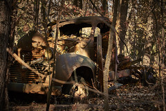 Returning to the elements (Valley Imagery) Tags: dodge truck wreck forest rust ruin leaves sony a99ii abandoned rusted maryland usa southern leonardtown