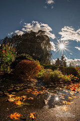 At the Bayard (Vinny Giordano) Tags: autumn facebookpic nikon fisheye giordanophotography2017 giordanophotos 12mmfisheye bayardcuttingarboretum clouds